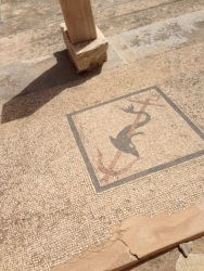 Another mosaic. Hard to believe this has been here for well over 2000 years!